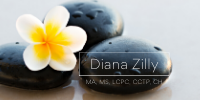Diana Zilly LLC